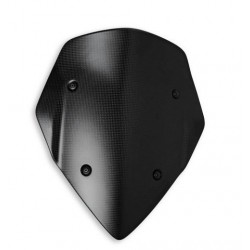 Protector Frontal Carbono