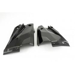 Tapas laterales inferiores en Carbono