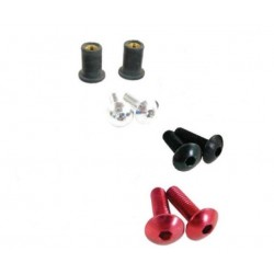 Tornilleria para cupula ducati Monster y S2R/S4R/S