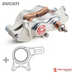 Kit completo de frenado trasero Discacciati para Ducati