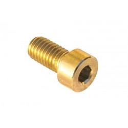 Screws for disk brake in titanium 8 X 20