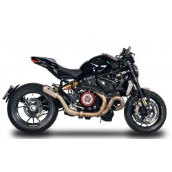 Escape spark Slipon Ducati Monster 1200R