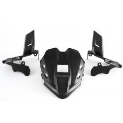 Cubierta de instrumentos carbono Ducati Panigale V4