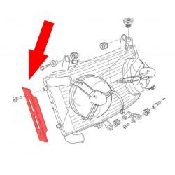 Protector radiador OEM Ducati Monster S4R Testastretta