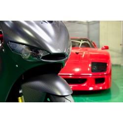 Frontal Carbon Dry para Ducati Desmosedici