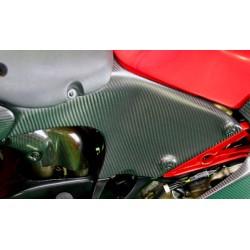 Carenado trasero Carbon Dry para Ducati Desmosedici