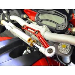 Kit amortiguador direccion Ohlins / Ducabike